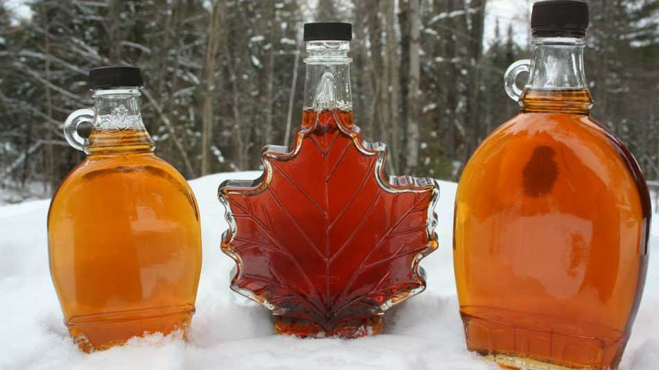 Sweetwater Maple Syrup Supplies & Sugarbush